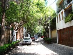Mexico City / Chimalistac - Street of the Secret / Secret Street / Security Patrol