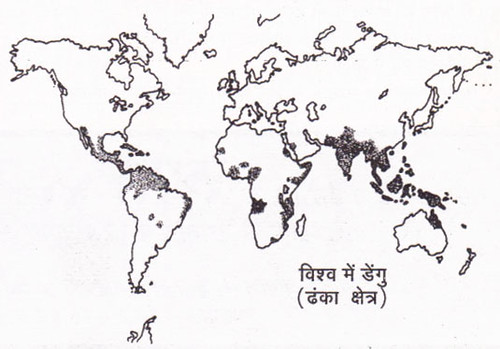 विश्व में डेंगू (प्रभावित क्षेत्र)