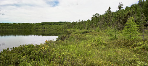 Glocke Lake State Natural Area