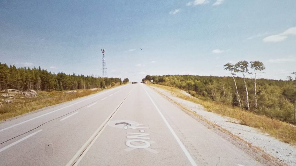 Tower, bird, 3 stand-out trees. #ridingthroughwalls #xcanadabikeride #googlestreetview #ontario