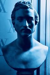 Prince Albert in blau