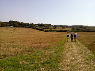 Walkers and Bales