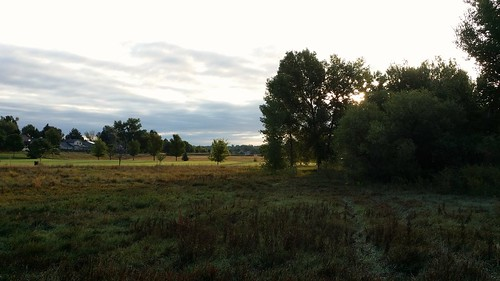 #tommw 50F Partly cloudy. Light breeze