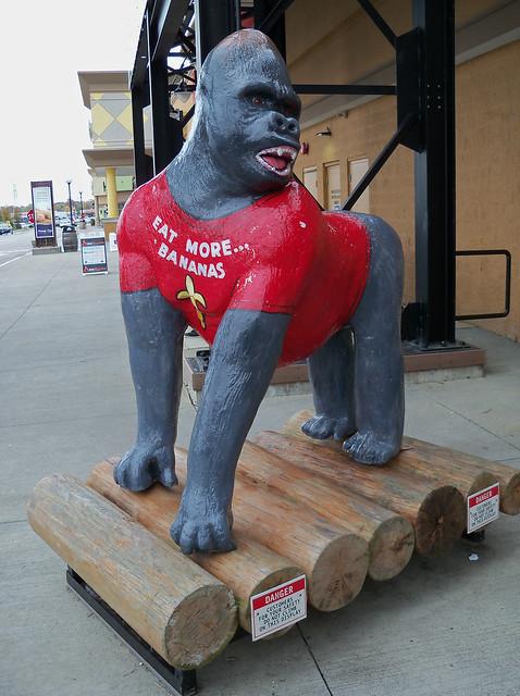 OH Cincinnati - Jungle Jim's Gorilla