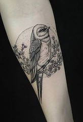 Bird tattoo - 50 Lov