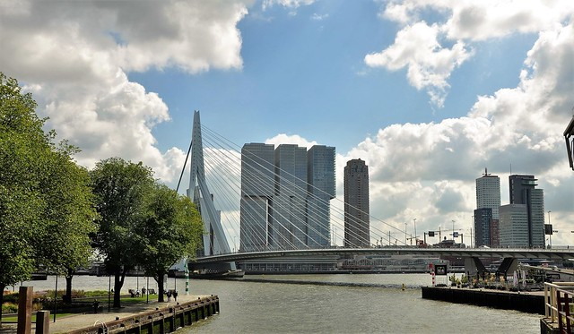 De brug / The bridge of Rotterdam