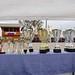 Kasaške dirke v Komendi 24.09.2017 Prva dirka