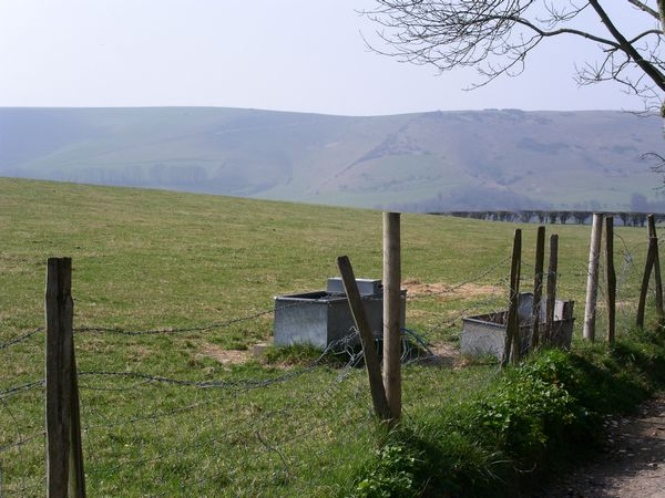 Second view of the Downs