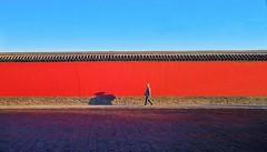 谁知萧墙外,形影自相怜 沈阳故宫太小了吧,奉天听着就霸气,不过我怎么就想起一身戎装张大帅大胡子……The Mukden Palace was built to resemble the Forbidden City in Beijing... similar color and style #沈阳 #沈阳故宫 #phoneonly #phonograph #iPhonegraph #phonecam #dailyphoto