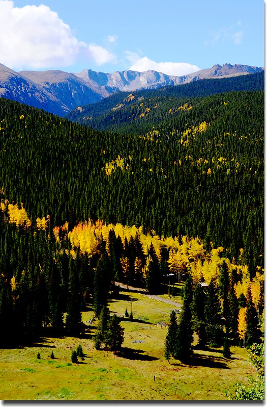 Fall colors, Mount Evans Scenic Byway, Colorado (45)