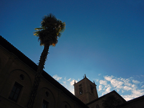 Najera Monastery: Silhouette of the building and palm tree against the sky