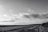 haywardshore-014.jpg by Yvonne Rathbone