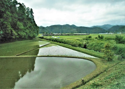 jp-Kannoura-Tokushima-train (7)