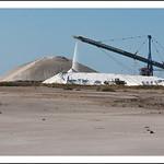 Camelle (dune de sel)