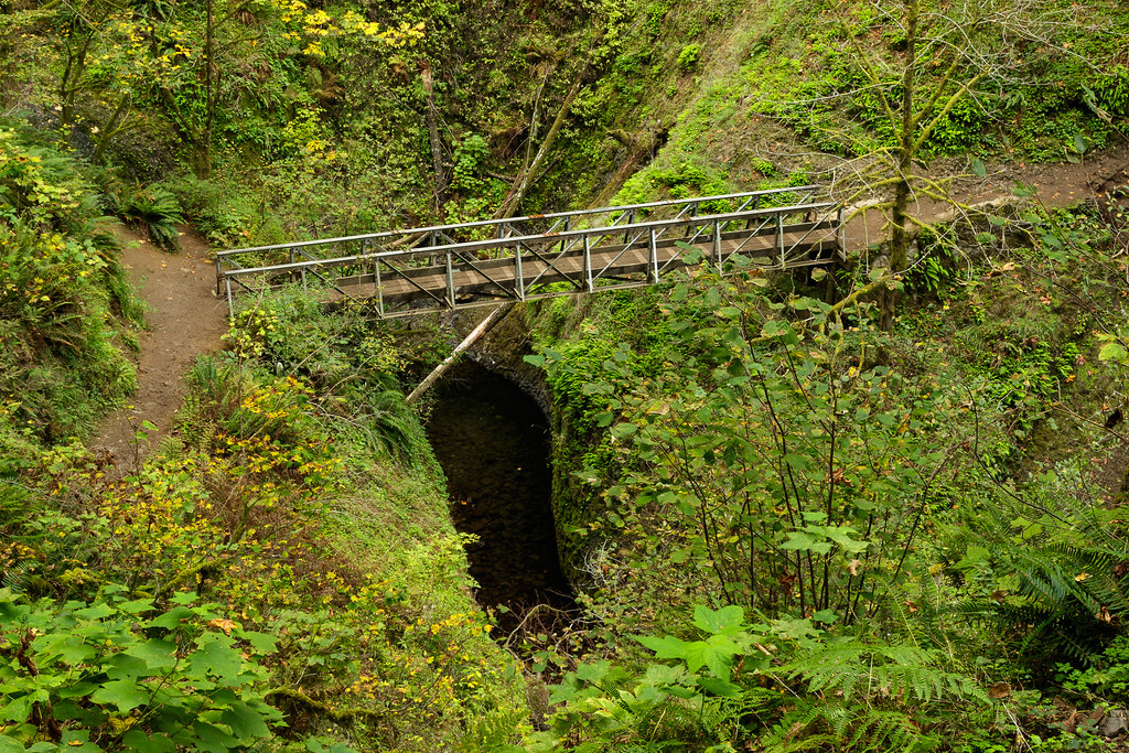 A bridge over a gorge in the Columbia River Gorge