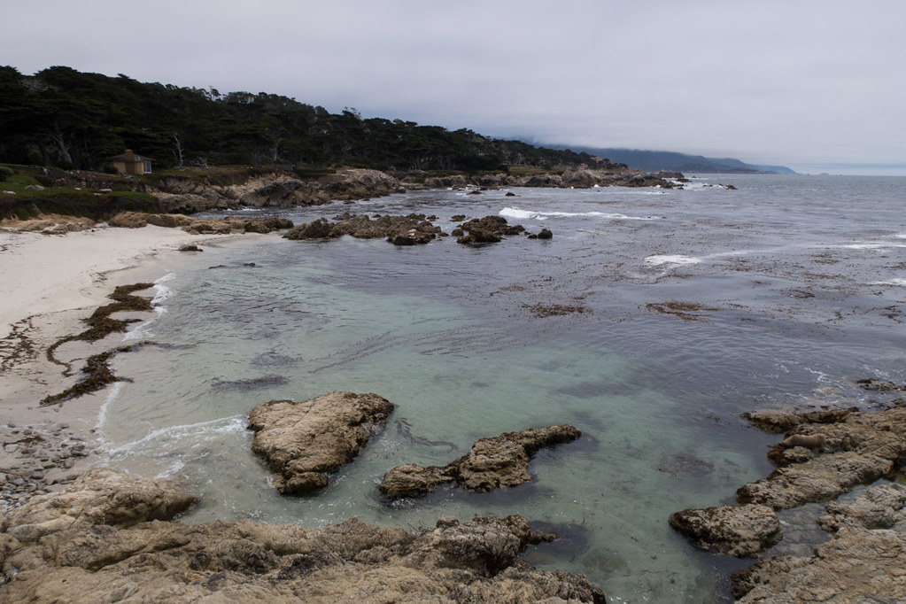 Coastal views in Big Sur and Carmel, California