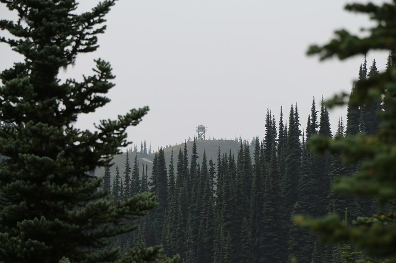 Zoomed-in shot of the Miners Ridge Lookout Tower - it was about a mile away and we decided to hike there