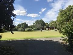 Norwood Grove