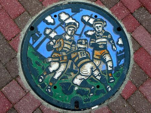 Higashiosaka Osaka, manhole cover (大阪府東大阪市のマンホール)