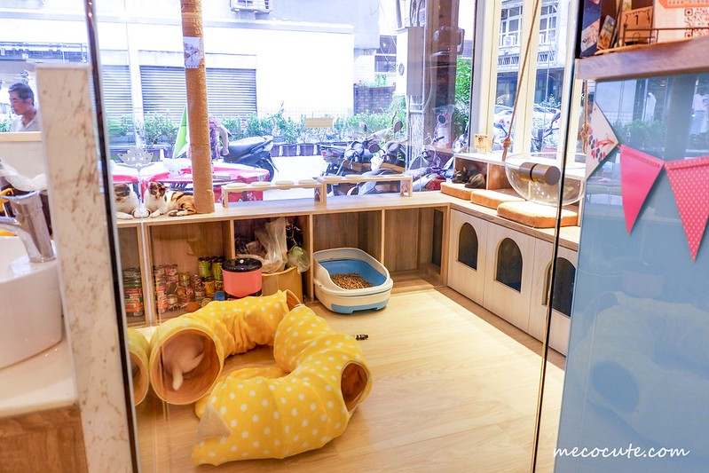 有貓咪的咖啡館,板橋咖啡館,板橋美食,板橋貓欸,貓咪咖啡廳板橋,貓欸,貓欸菜單 @陳小可的吃喝玩樂