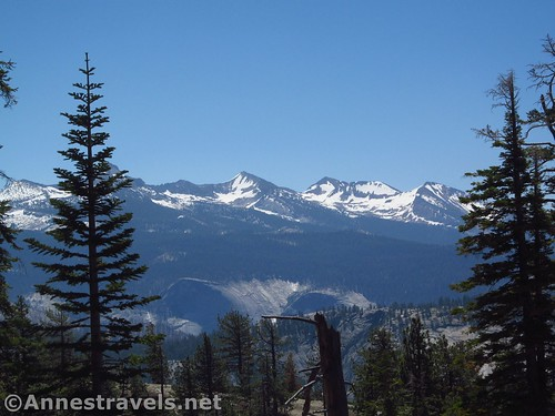 The snowy Sierras from the trail to Indian Rock Arch in Yosemite National Park, California