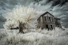 Abandoned Home Infrared