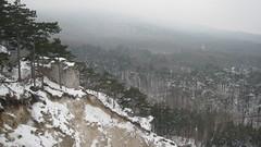 IMG_8522 Steinbruch unterhalb Ruine Rauheneck, 24.1.2010