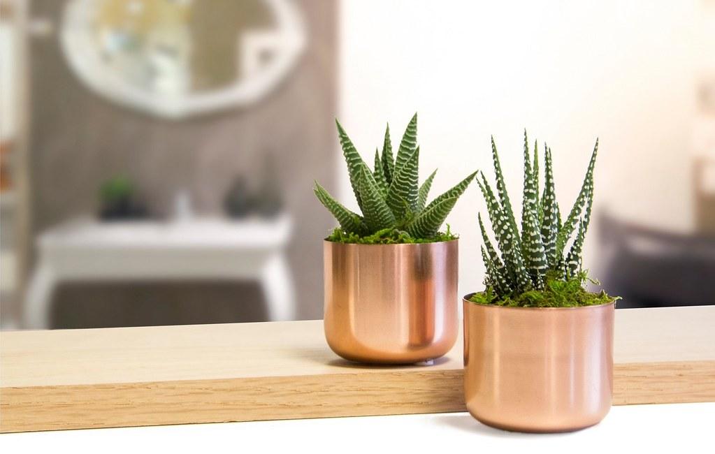 target copper pots