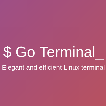 Go Terminal ทำไมเธอช่างงดงามอะไรเช่นนี้แถมยังเก่งอีกด้วย