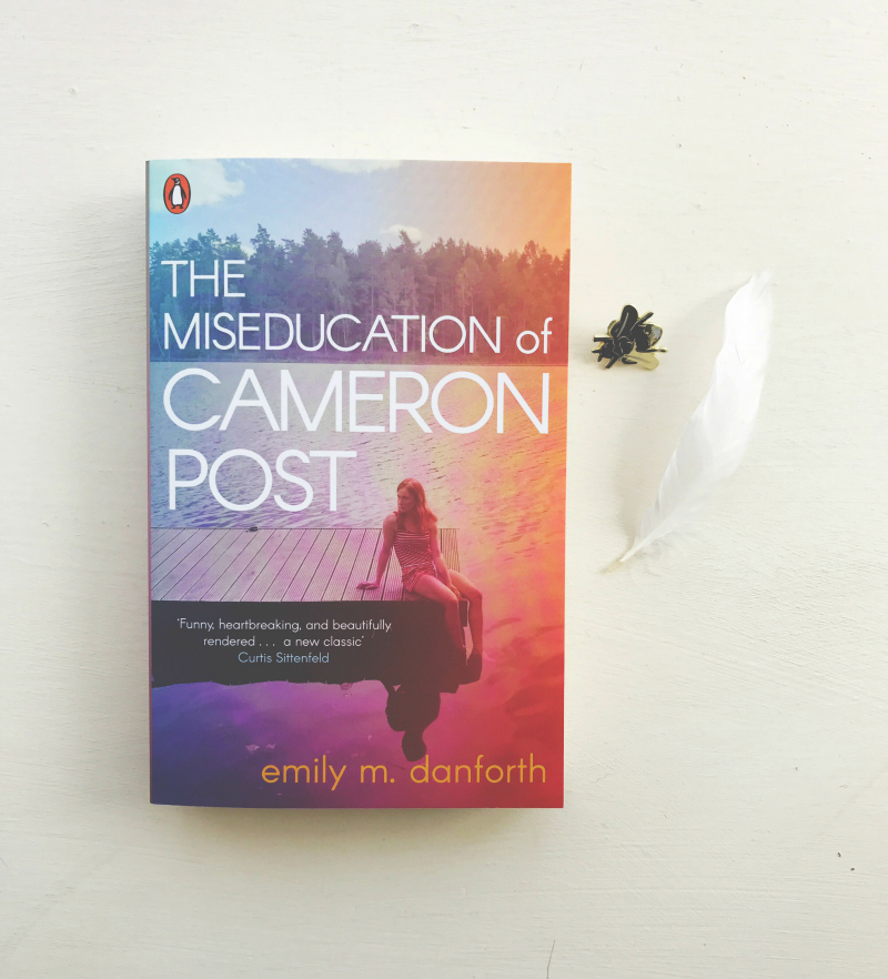 the miseducation of cameron post book blog vivatramp uk