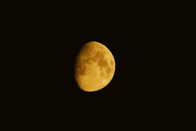 orange moon  _1042, Canon EOS 80D, Tamron SP 70-300mm f/4.0-5.6 Di VC USD