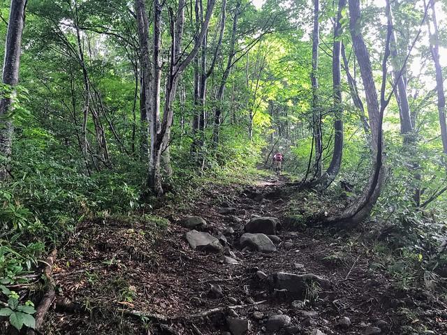 銚子ヶ峰 登山道
