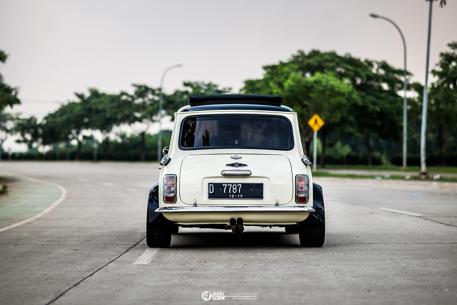 Jaudwin Classic Mini