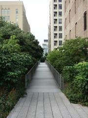 201709037 New York City Chelsea High Line Park