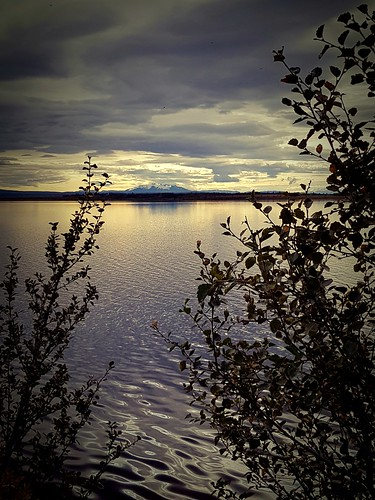 lake laugarvatn iceland sunrise water trees oeiriks