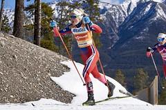 Therese Johaugová nebude startovat na Zimních olympijských hrách