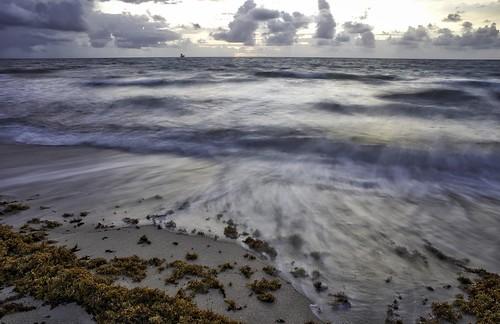 Atlantic morning, Fort Lauderdale, Florida