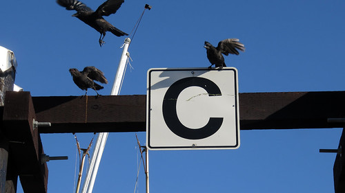 Tofino's wharf with the letter 'C' standing for 'Crows'