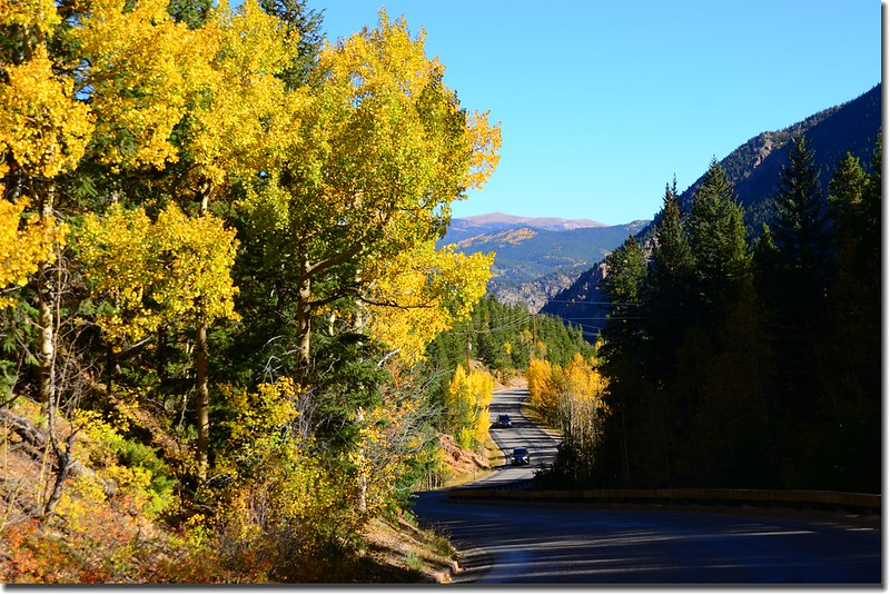 Fall colors, Guanella Pass, Colorado (26)