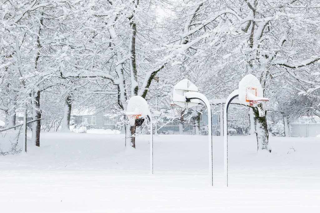 The basketball courts at Irving Park, and the surrounding trees, are covered in heavy snow