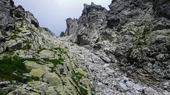 Zejscie z grani Kieżmarskiego do Doliny Łomnickiej
