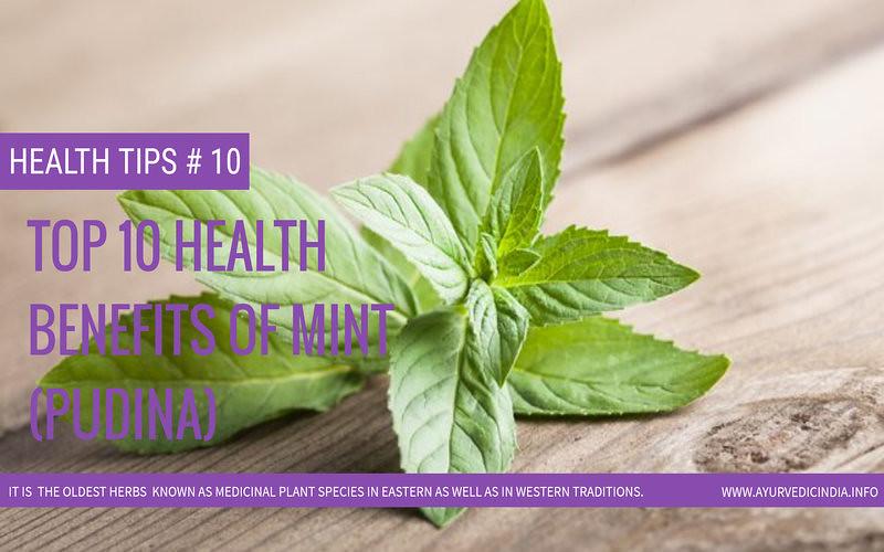 Top 10 Health Benefits Of Mint (Pudina)
