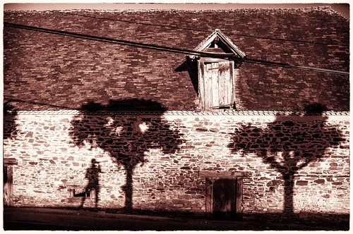 .. photographer at the gates of dawn .. French rural version