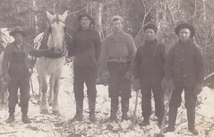 RPPC AXE MEN AND DRIVERS Hard Working Sturdy Michigan Lumberjacks  and their Draft Horse Team believe the location to be in Traverse Kalkaska or Benzie County possible A. B. Case Crew3