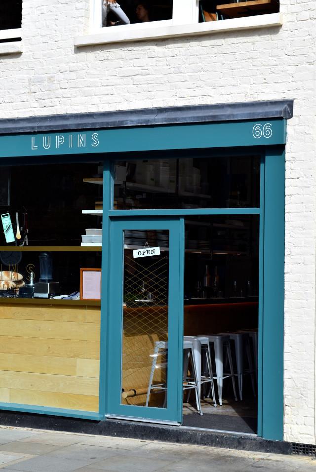 Lupins, Borough | www.rachelphipps.com @rachelphipps