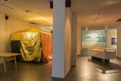 Bienal Sur - Pensamiento salvaje
