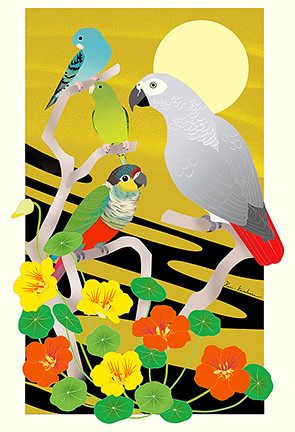 Garden nasturtium, barred parakeet, crimson-bellied parakeet and grey parrot