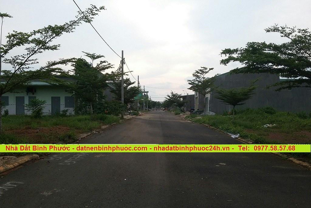 Bán Đất Khu Dân Cư Đối diện KCN Bắc Đồng Phú