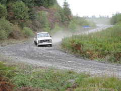 Galloway Hills Rally 2017 SS4