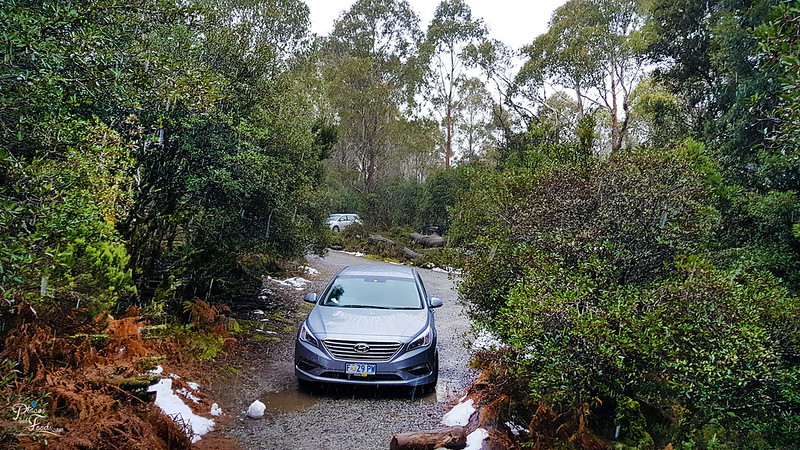 tasmania self drive snow